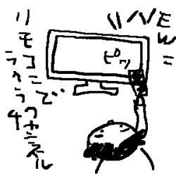 2011usa02.jpg